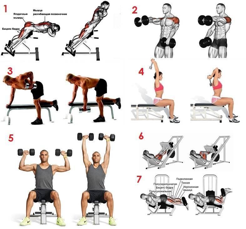 Особенности и польза разминки перед тренировкой в тренажерном зале