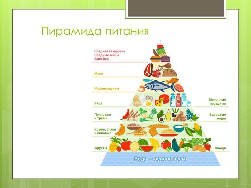 """Пирамида питания - """"всеядное"""" питание."""
