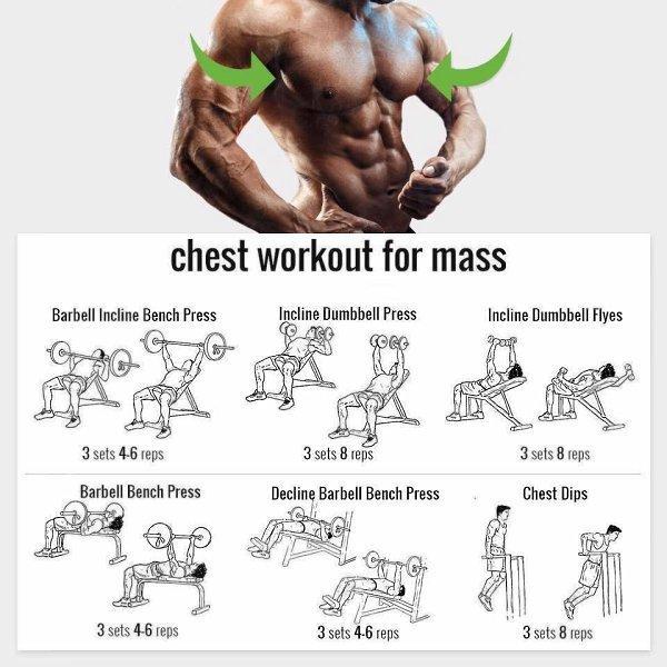 Основные правила и особенности тренировки грудных мышц - dailyfit