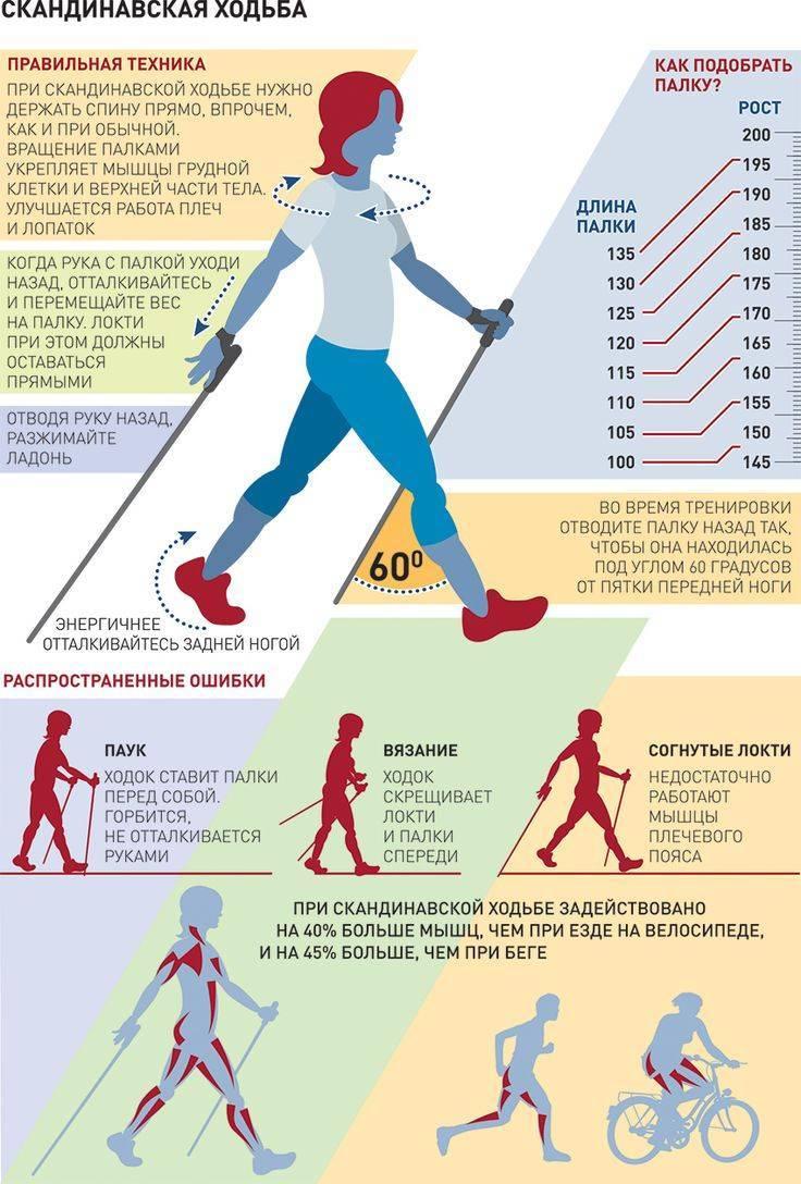Ходьба для похудения: помогает ли быстрая прогулка похудеть и как нужно правильно ходить