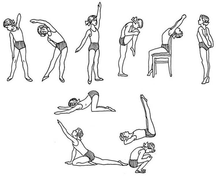Упражнения при сколиозе позвоночника