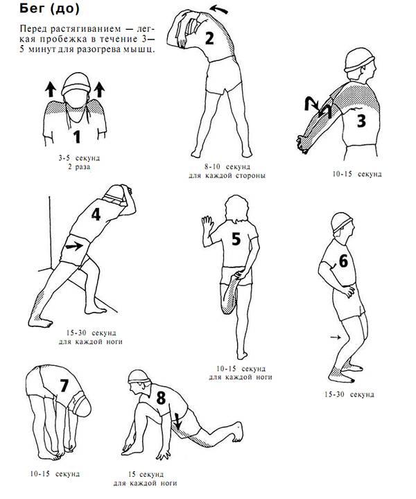 Заминка после тренировки: польза, упражнения и тренировочные программы | rulebody.ru — правила тела