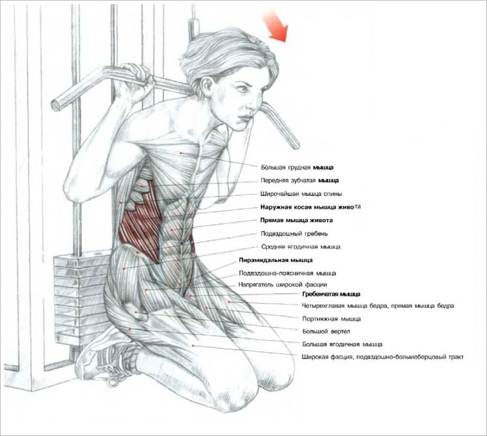 Тяга верхнего блока: к груди, за голову, обратным и узким хватом.