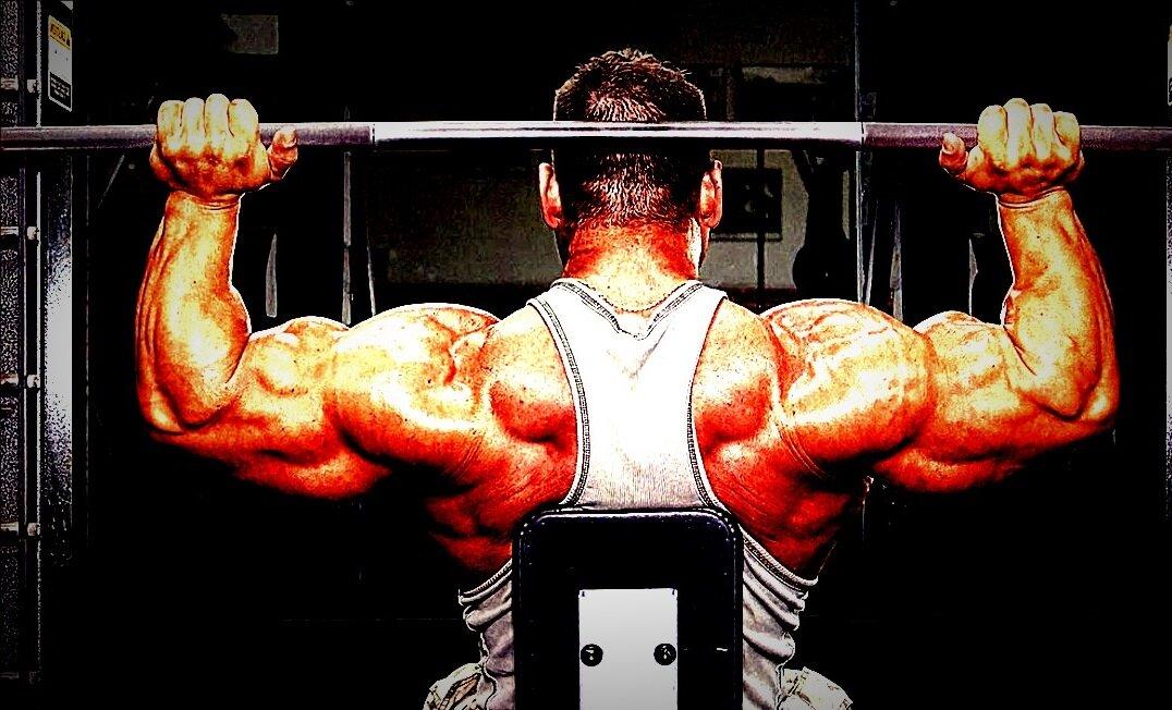 7 эффективных упражнений для широких плеч   brodude.ru