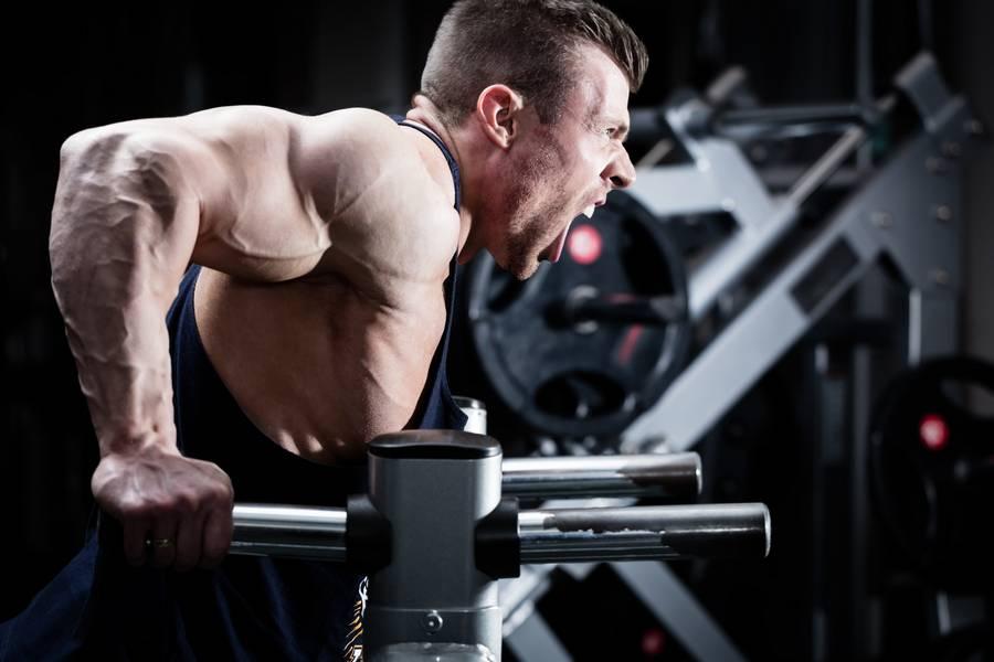 Бодибилдинг для начинающих: программа, упражнения, питание