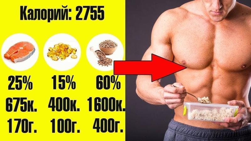 Соотношение бжу при наборе массы — нормы для быстрого роста мышц