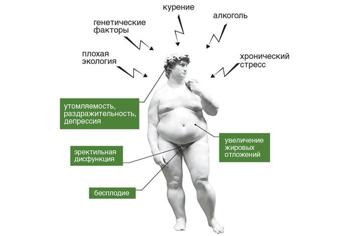 Повышенный тестостерон у мужчин - как снизить уровень гормона