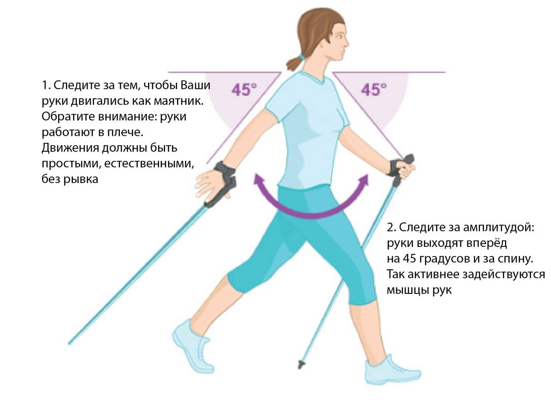 Пешие прогулки для похудения: помогают или нет?