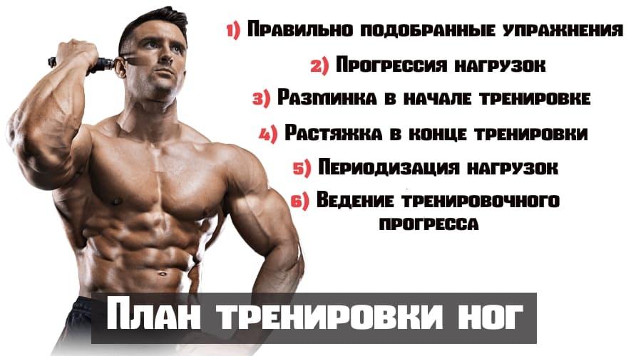 Базовые упражнения и тренировка для набора мышечной массы