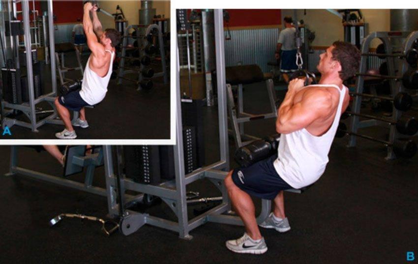 Тяга верхнего блока для развития мышц спины