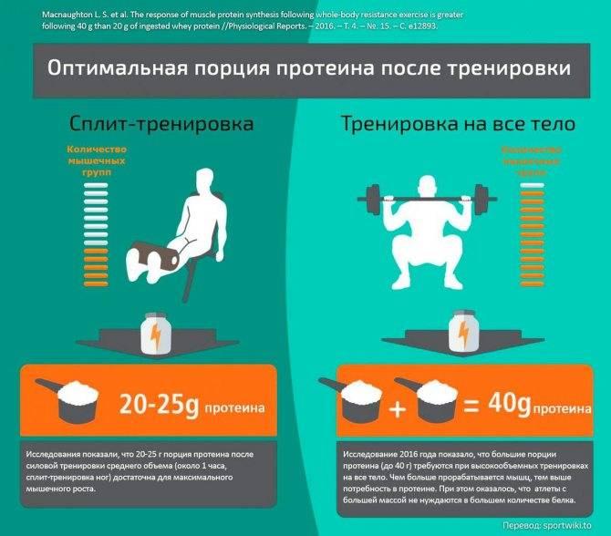 Протеин до или после тренировки | все о похудении, здоровом питании и диетах