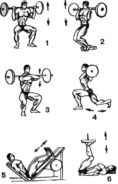 Упражнения в домашних условиях: комплекс для всех мышц