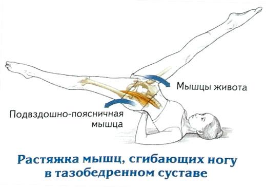 Все о подвздошно-поясничной мышце: эффективные упражнения на