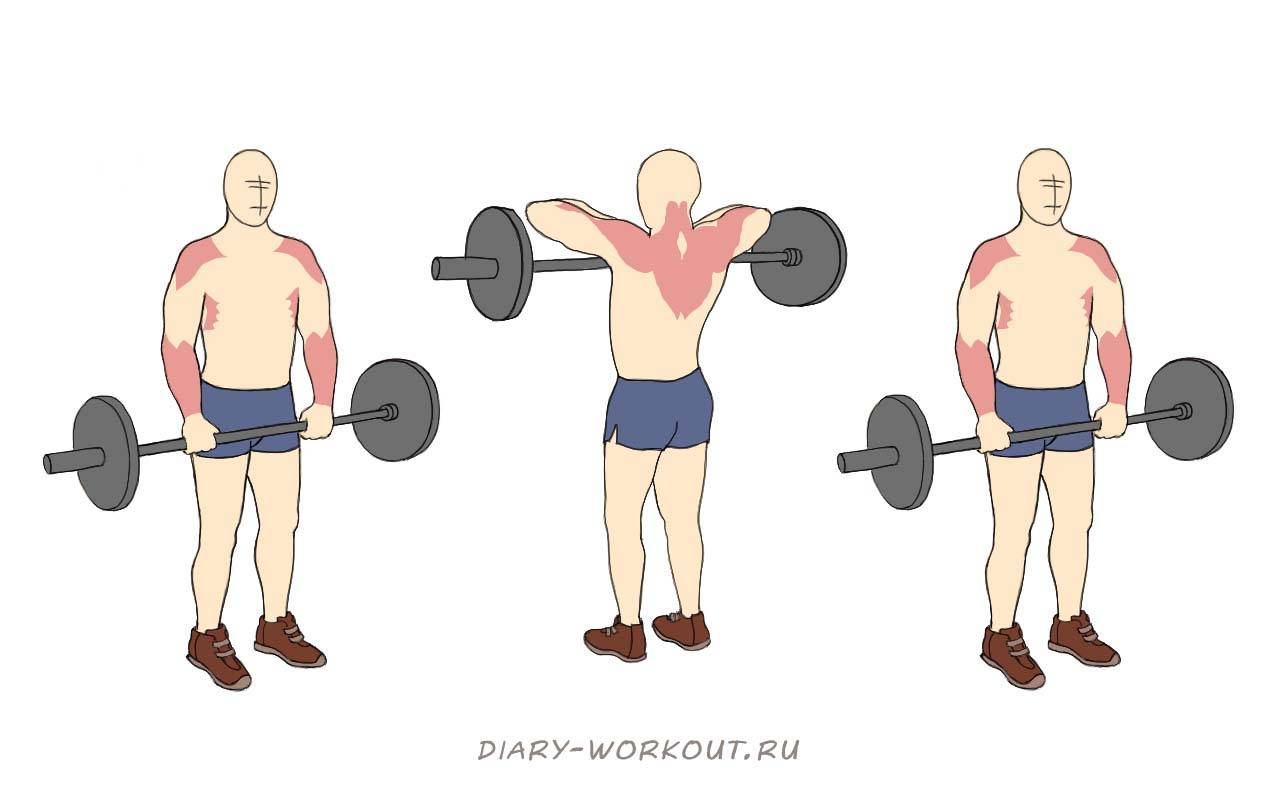 Правильная техника выполнения тяги штанги к подбородку узким и широким хватом