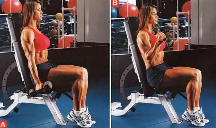 Молотки с гантелями: техника выполнения упражнения на бицепс