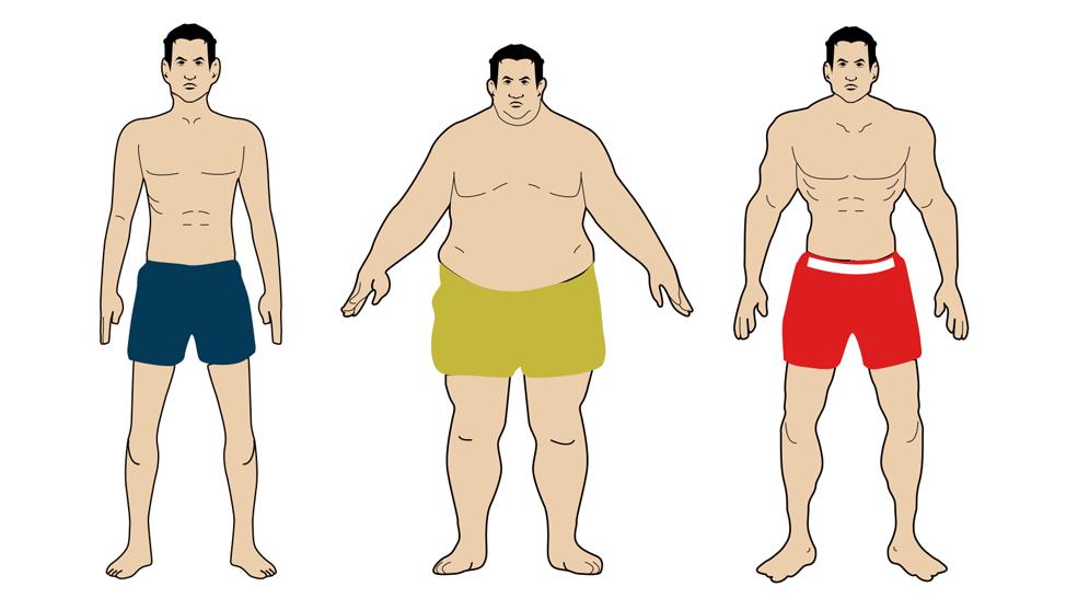 Программа тренировок для эктоморфа для набора массы в тренажерном зале и дома
