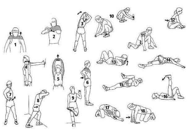 Стретчинг для похудения в домашних условиях - польза и техника выполнения упражнений