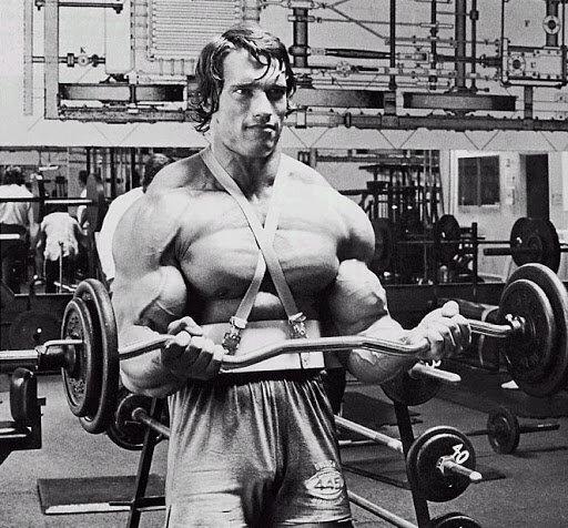 Арнольд шварценеггер: количество побед на олимпии, пятилетний перерыв, мотивация и советы