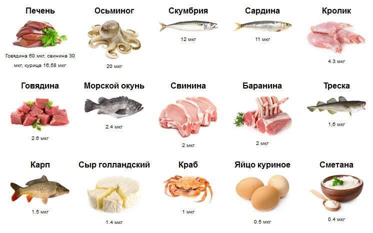Содержание в продуктах витамина в12: таблица