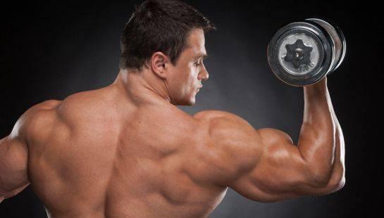 Сила или масса: почему для роста объема мышц важно тренировать и их силу