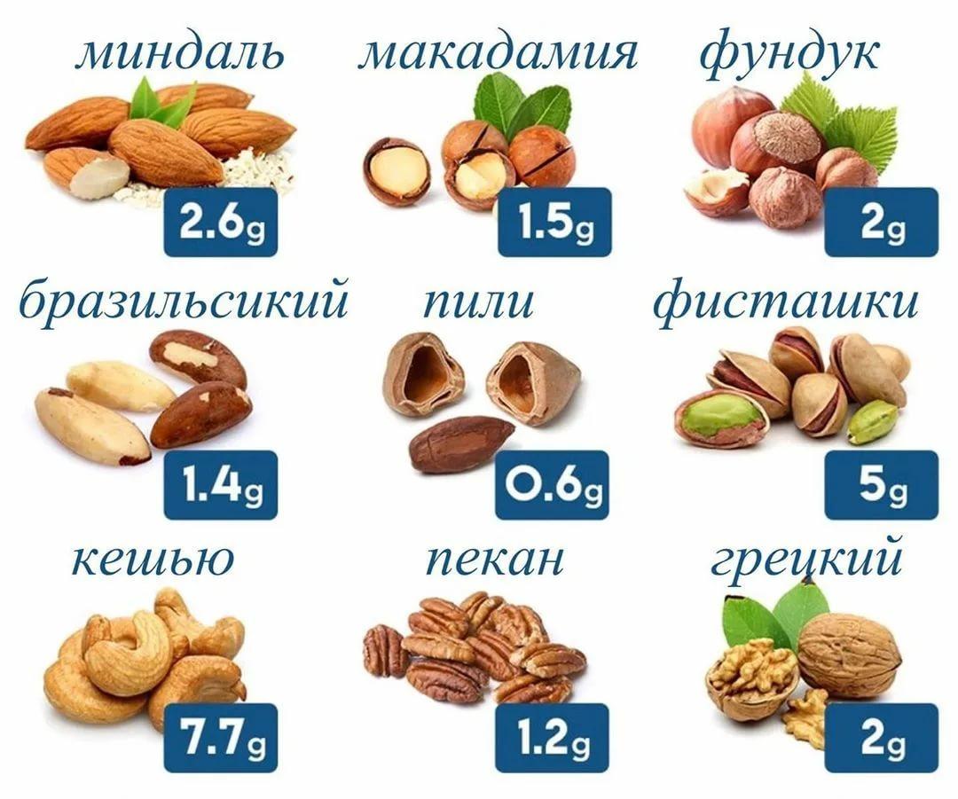 Калорийность орехов – таблица