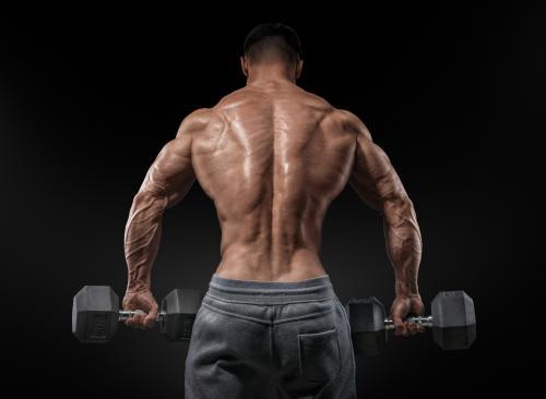Шраги со штангой: техника выполнения упражнения (стоя, за спиной, перед собой)