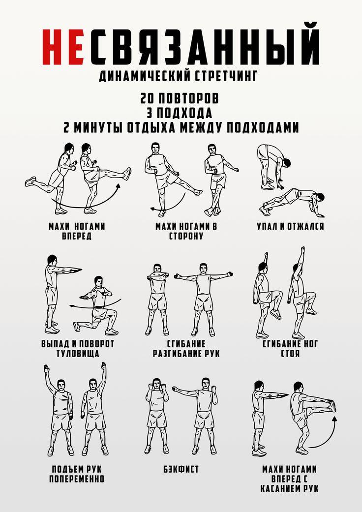 Растяжка после силовой тренировки: можно ли делать стретчинг до занятий, зачем он нужен, упражнения на мышцы спины или ног