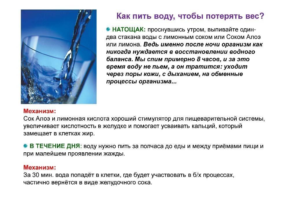 Можно ли пить после еды? какую жидкость можно употреблять?