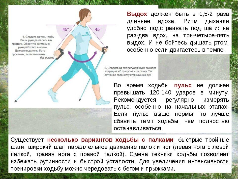 Скандинавская ходьба с палками для похудения: отзывы