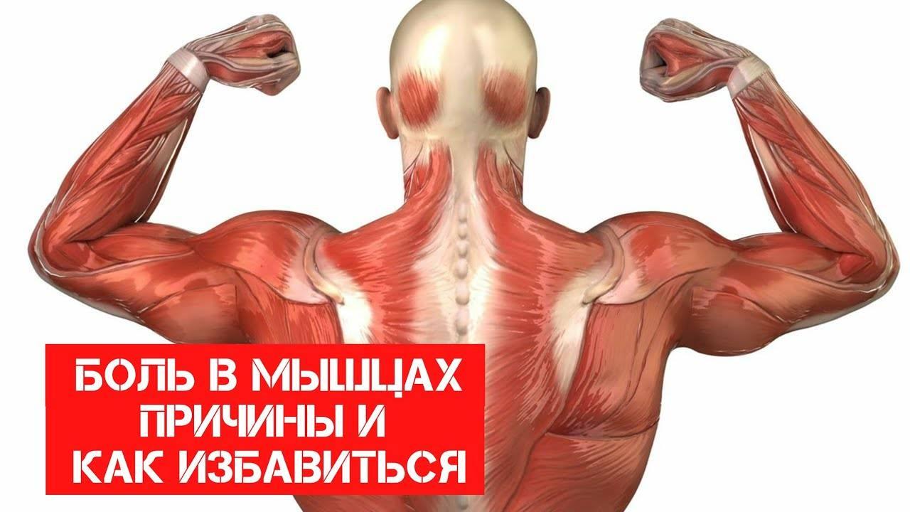 Снятие мышечной боли после силовых тренировок