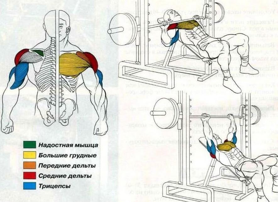 Упражнения на блочных тренажерах