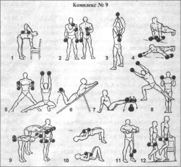 Гимнастические упражнения: 64 фото учебных программ для новичков