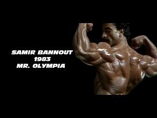Как выглядят победители мистер олимпия на пике формы