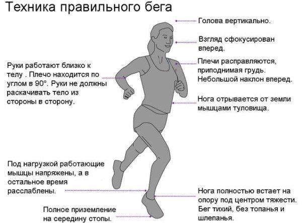 Как правильно бегать, чтобы похудеть | школа бега run studio