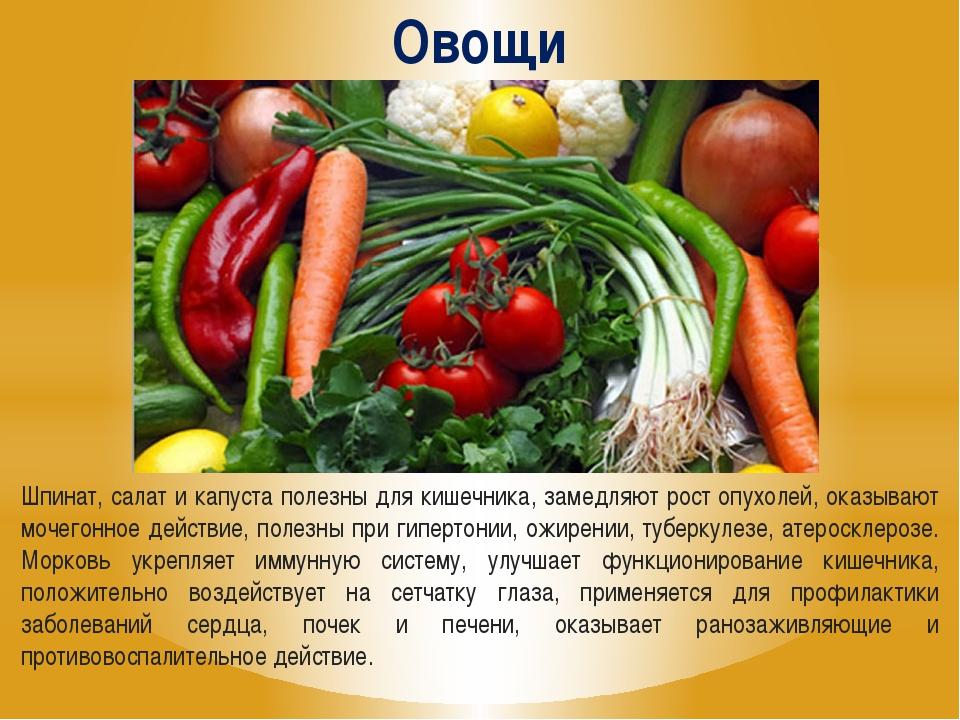 Польза овощей для организма человека: сырые, вареные, тушеные, замороженные и на гриле |
