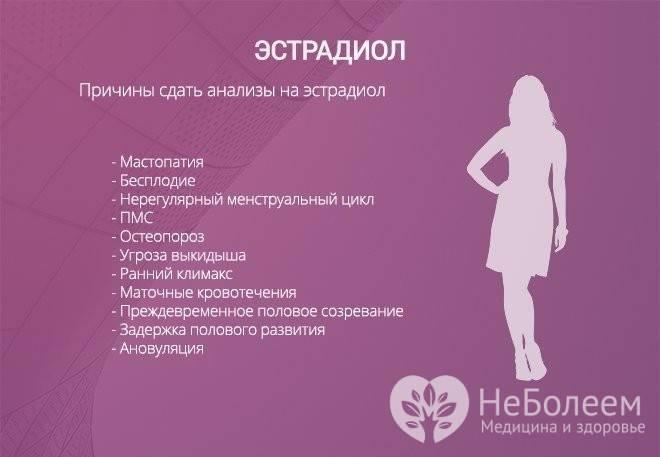 Как повысить уровень эстрогена у женщин: естественные способы и медицинские препараты   lisa.ru