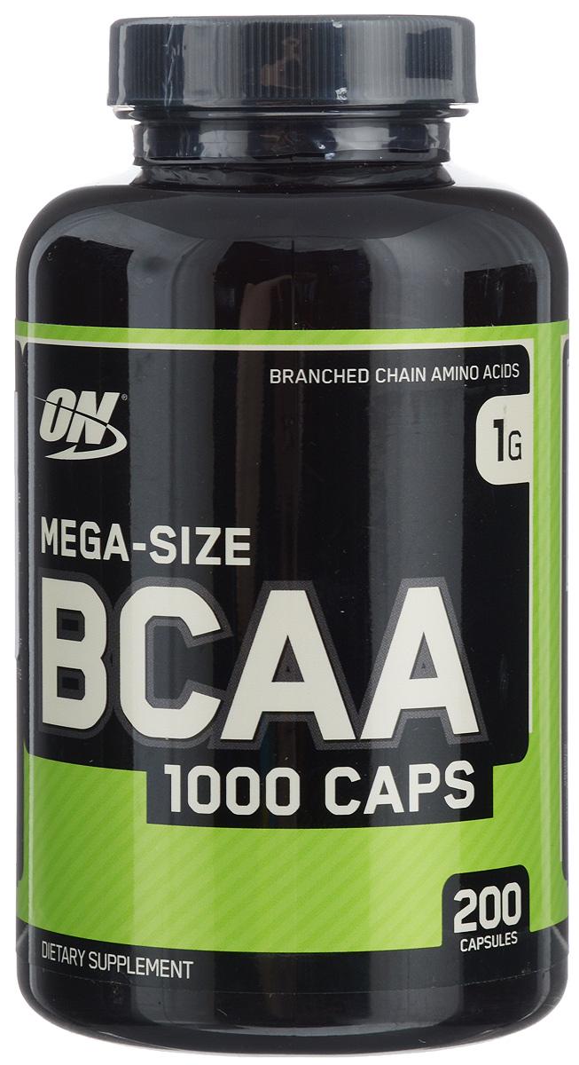 Что лучше bcaa или протеин, что принимать до и после тренировки в зале?