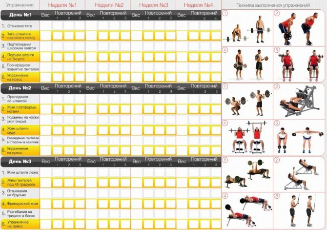Эффективные упражнения для увеличения роста тела в высоту