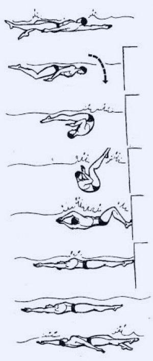Как научиться плавать стилем баттерфляй: порядок действий и упражнения