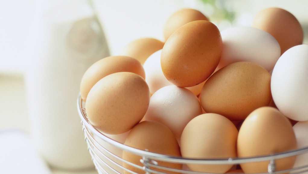 Яичный протеин в бодибилдинге: плюсы и минусы, сравнение с сывороточным и цельными яйцами, отзывы учёных