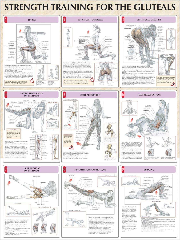 Комплекс упражнений в домашних условиях - подбор самых эффективных упражнений для всех групп мышц