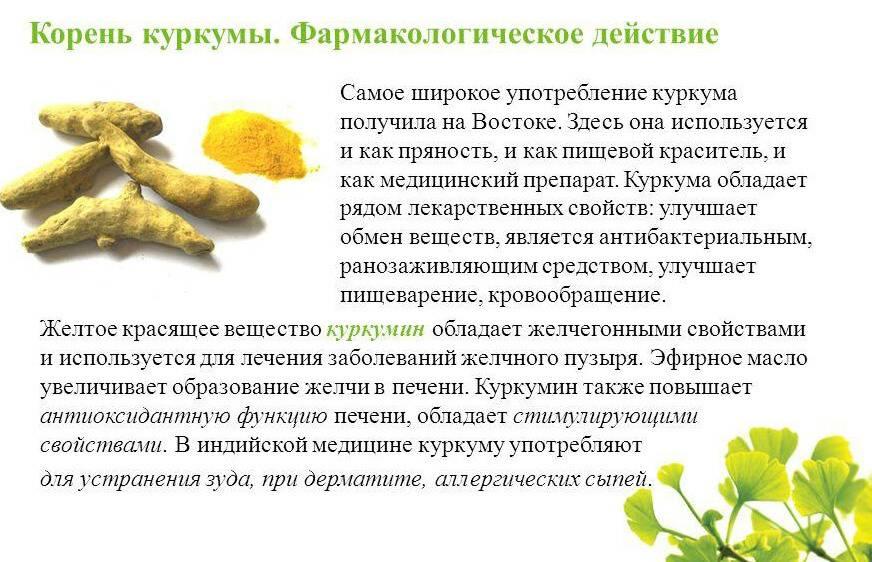 Куркума - польза и вред для здоровья после 50 лет