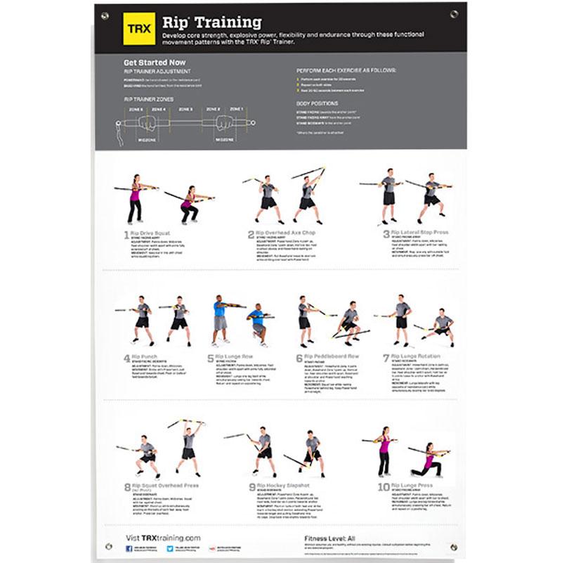Базовая (начальная) программа тренировок на петлях trx
