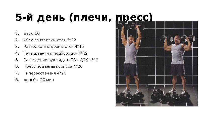 Упражнения для рук и плеч: 11 эффективных упражнений с фото