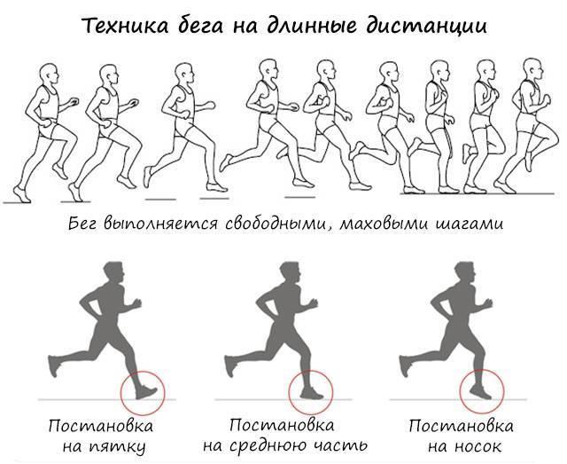 Правила бега для начинающих. все что необходимо знать