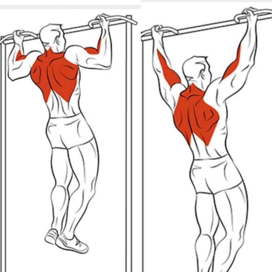 Как накачать плечи на турнике: упражнения на плечи на турнике и брусьях. тренировка для плеч на турнике