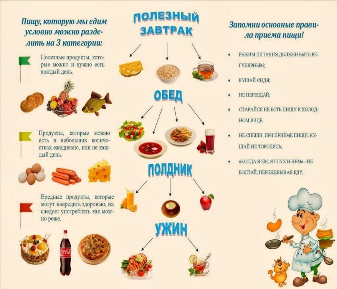 Сколько раз в день нужно есть, расписание правильного питания на каждый день