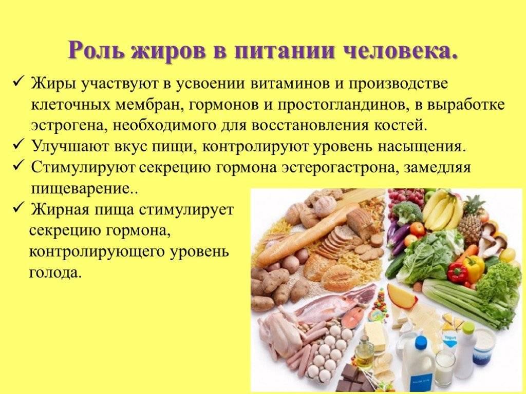Полезные жиры: что это такое, продукты с их содержанием