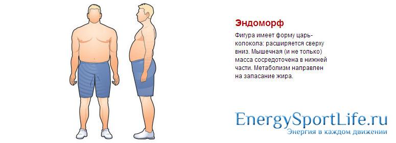 Кто такие эктоморфы?