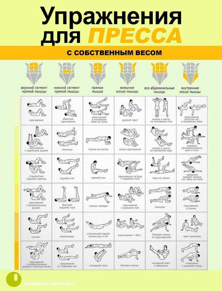 Утренняя зарядка: комплекс упражнений с фото и видео для утренней гимнастики